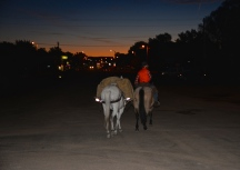"""The ride in at dusk to Broadus, Mt., the """"Wavingest town in the West."""""""